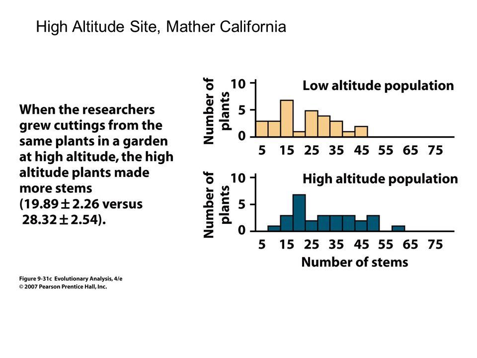 High Altitude Site, Mather California