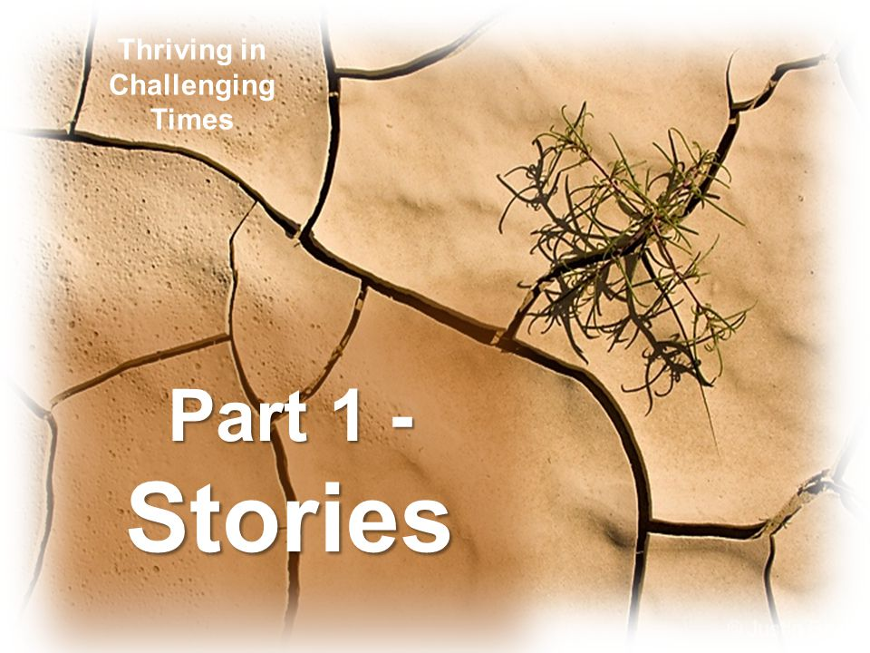 Part 1 - Stories Thriving in Challenging Times