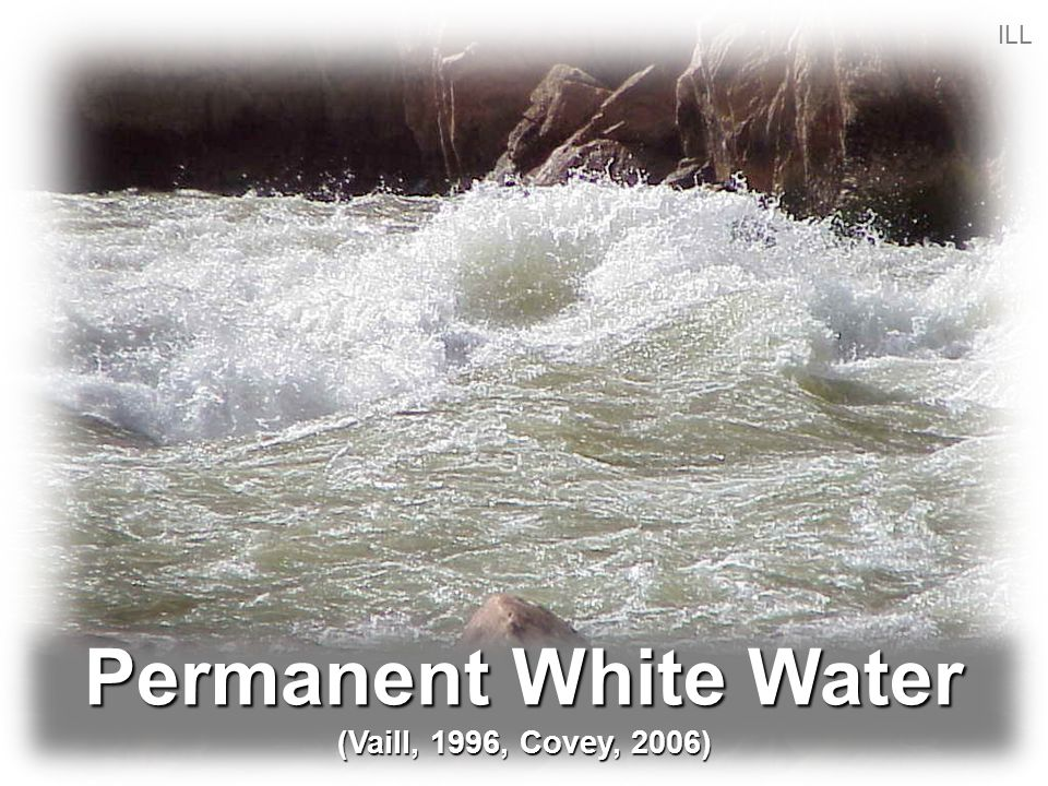 Permanent White Water (Vaill, 1996, Covey, 2006) ILL