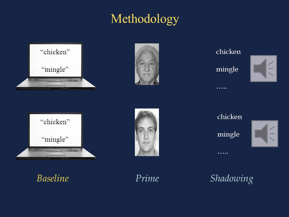 Methodology BaselinePrimeShadowing chicken mingle …..