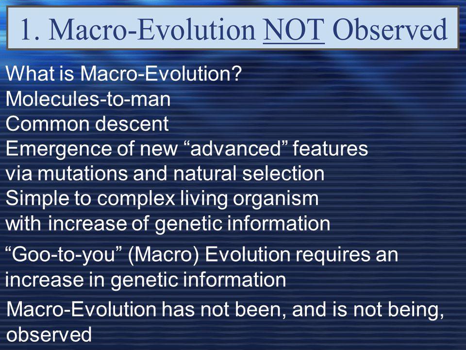 What is Macro-Evolution.