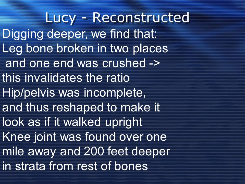 Lucy - Reconstructed Digging deeper, we find that: Leg bone broken in two places and one end was crushed -> this invalidates the ratio Hip/pelvis was incomplete, and thus reshaped to make it look as if it walked upright Knee joint was found over one mile away and 200 feet deeper in strata from rest of bones