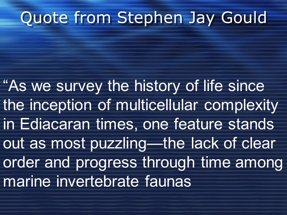 """Quote from Stephen Jay Gould """"As we survey the history of life since the inception of multicellular complexity in Ediacaran times, one feature stands"""