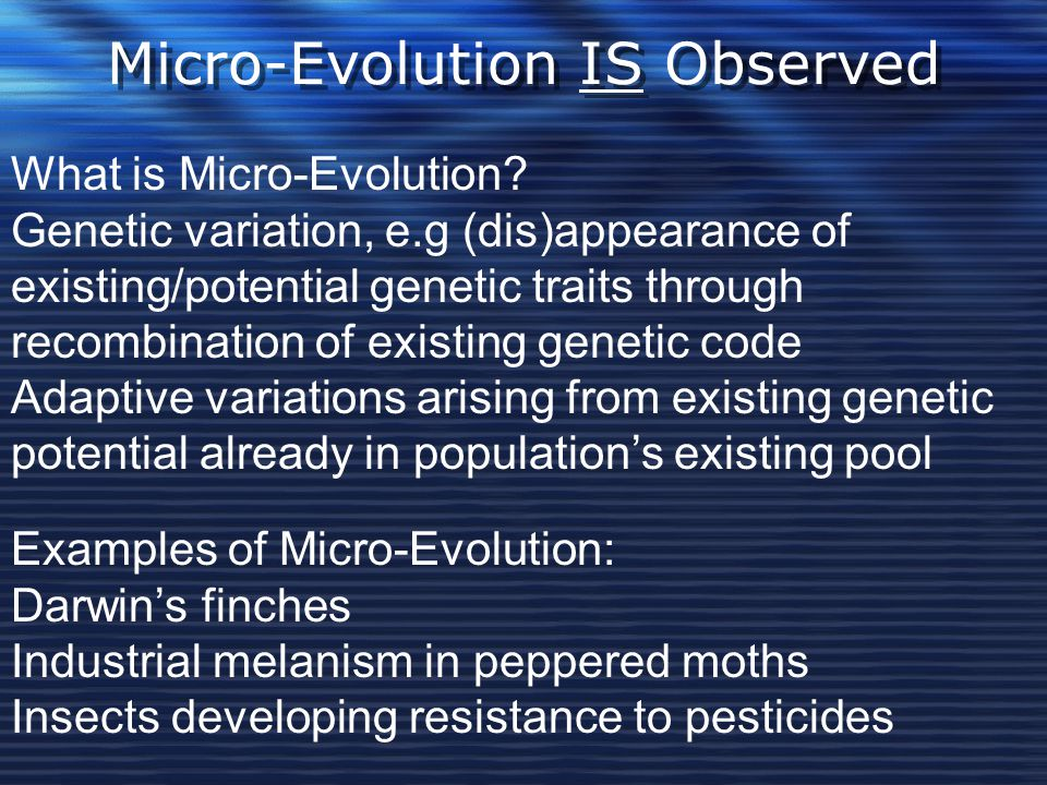 Micro-Evolution IS Observed What is Micro-Evolution? Genetic variation, e.g (dis)appearance of existing/potential genetic traits through recombination