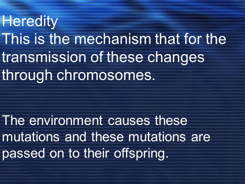 Heredity This is the mechanism that for the transmission of these changes through chromosomes.