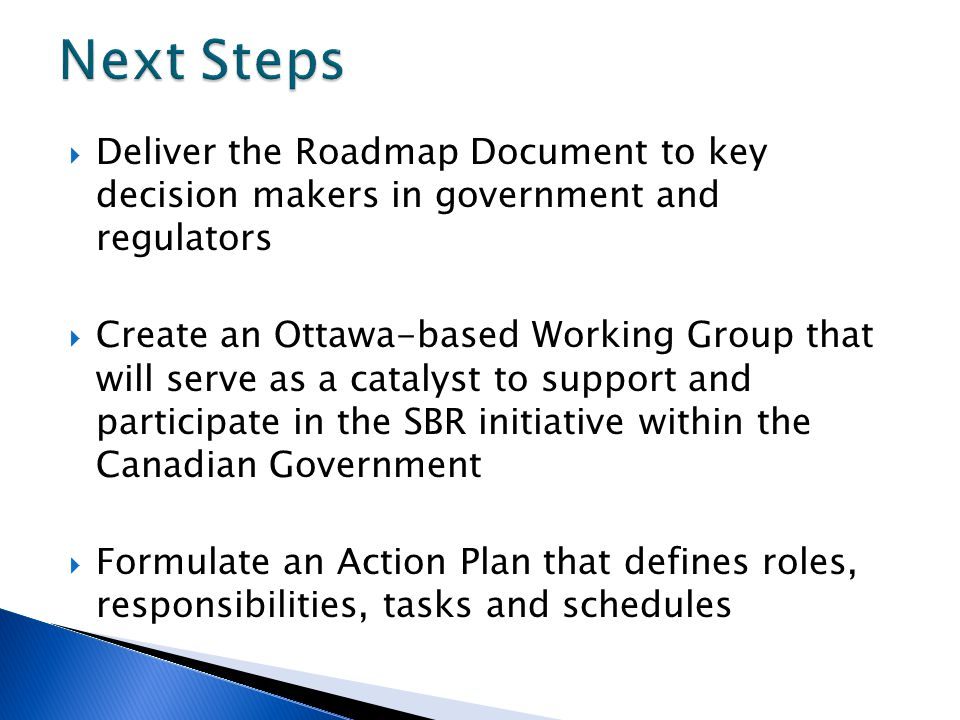  Deliver the Roadmap Document to key decision makers in government and regulators  Create an Ottawa-based Working Group that will serve as a catalyst to support and participate in the SBR initiative within the Canadian Government  Formulate an Action Plan that defines roles, responsibilities, tasks and schedules