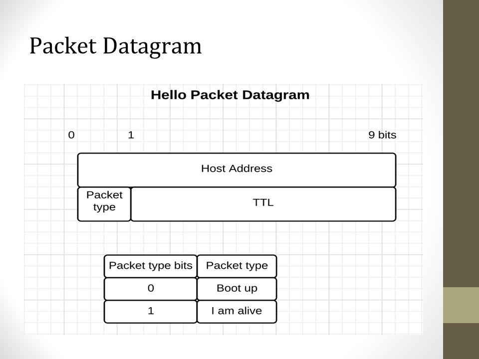 Packet Datagram