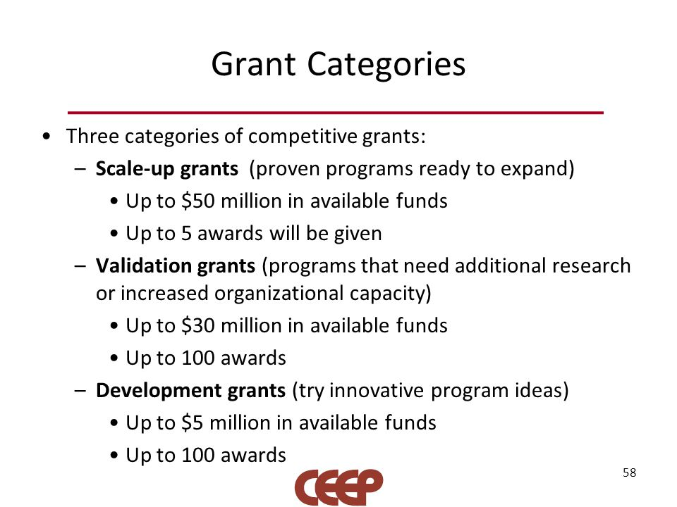 Grant Categories Three categories of competitive grants: –Scale-up grants (proven programs ready to expand) Up to $50 million in available funds Up to 5 awards will be given –Validation grants (programs that need additional research or increased organizational capacity) Up to $30 million in available funds Up to 100 awards –Development grants (try innovative program ideas) Up to $5 million in available funds Up to 100 awards 58