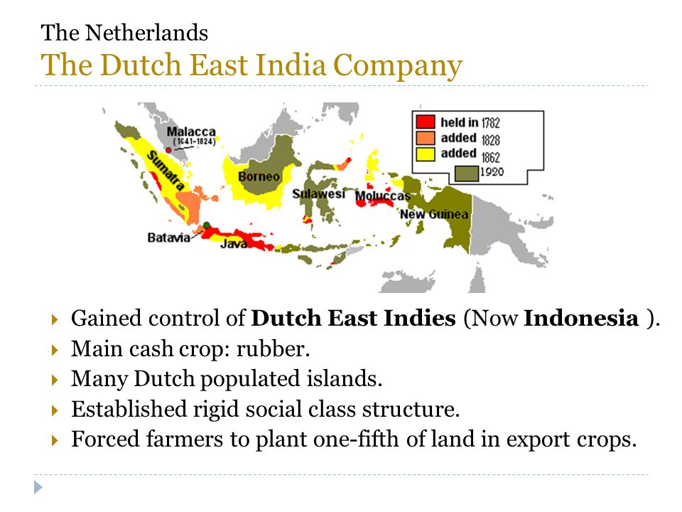 The Netherlands The Dutch East India Company  Gained control of Dutch East Indies (Now Indonesia ).  Main cash crop: rubber.  Many Dutch populated