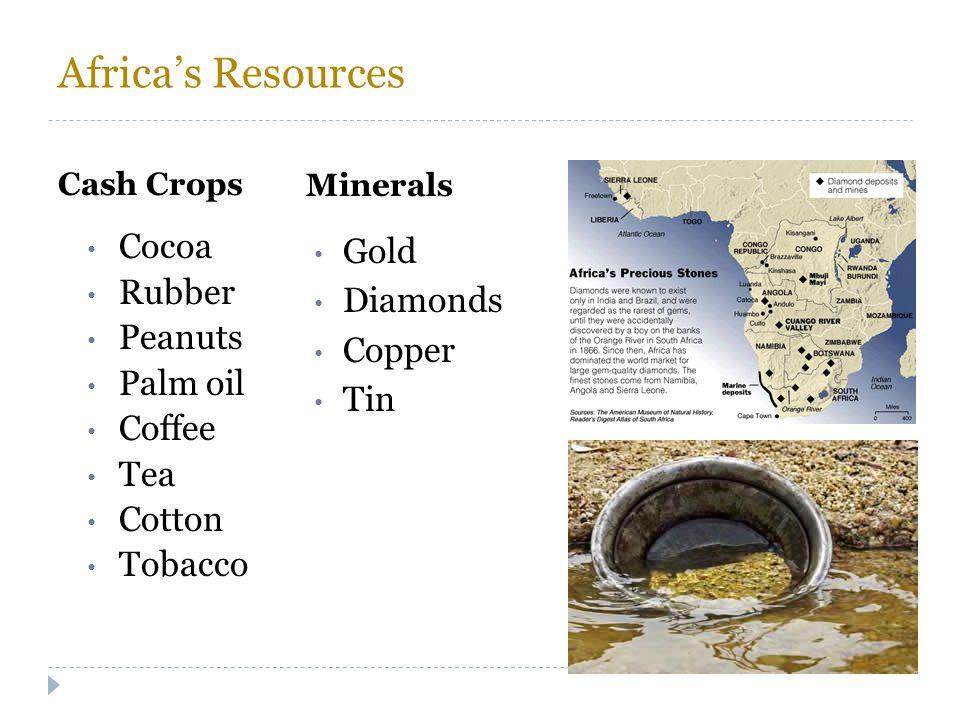 Africa's Resources Cash Crops Minerals Cocoa Rubber Peanuts Palm oil Coffee Tea Cotton Tobacco Gold Diamonds Copper Tin