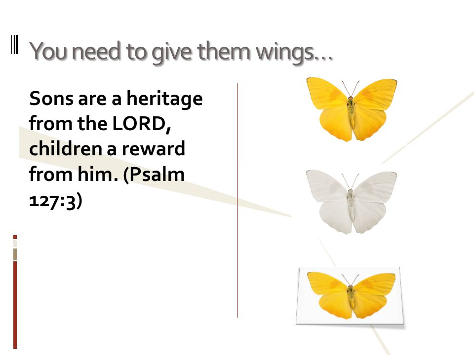 You need to give them wings… Sons are a heritage from the LORD, children a reward from him.