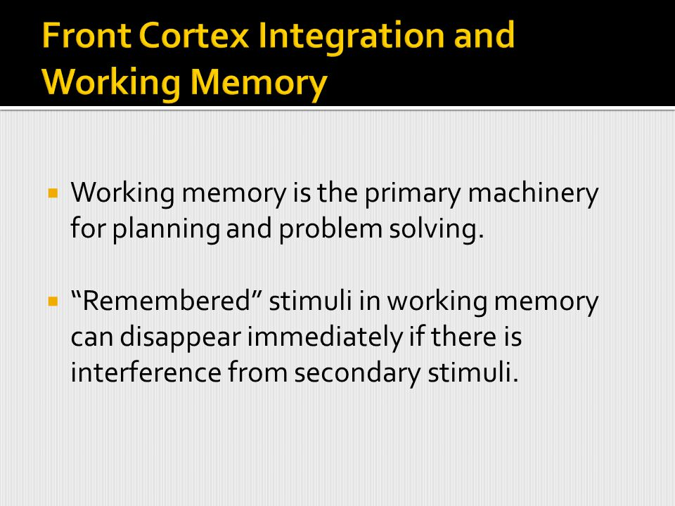  Working memory is the primary machinery for planning and problem solving.