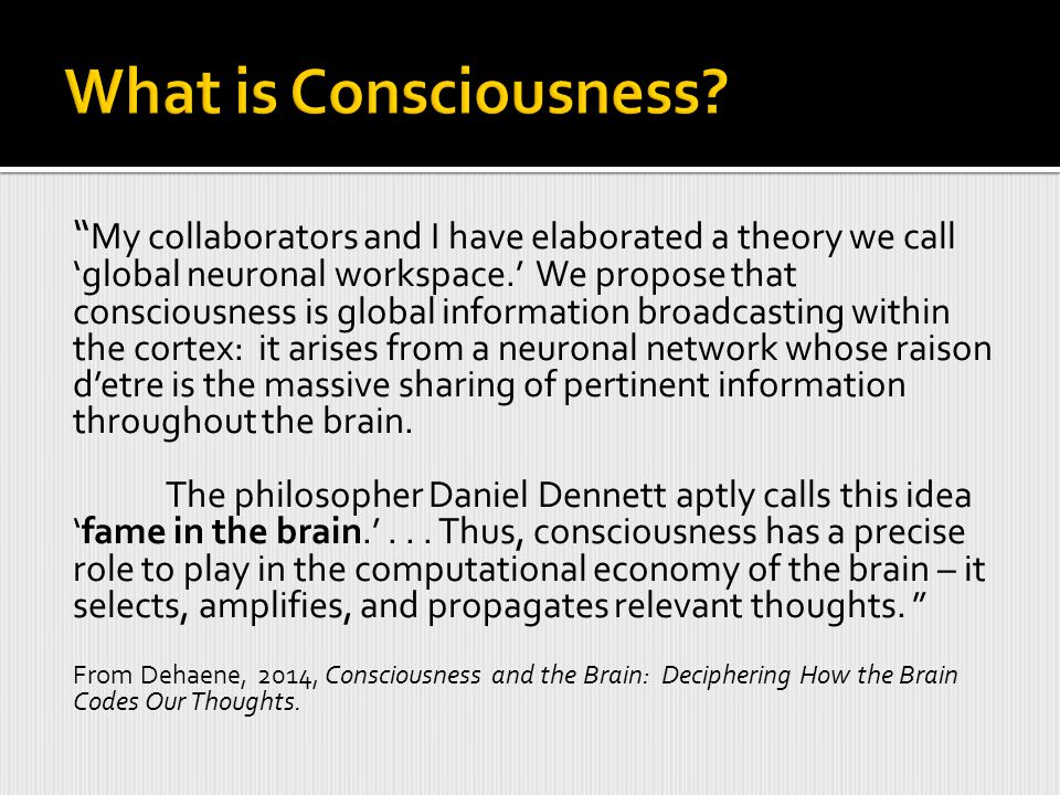My collaborators and I have elaborated a theory we call 'global neuronal workspace.' We propose that consciousness is global information broadcasting within the cortex: it arises from a neuronal network whose raison d'etre is the massive sharing of pertinent information throughout the brain.