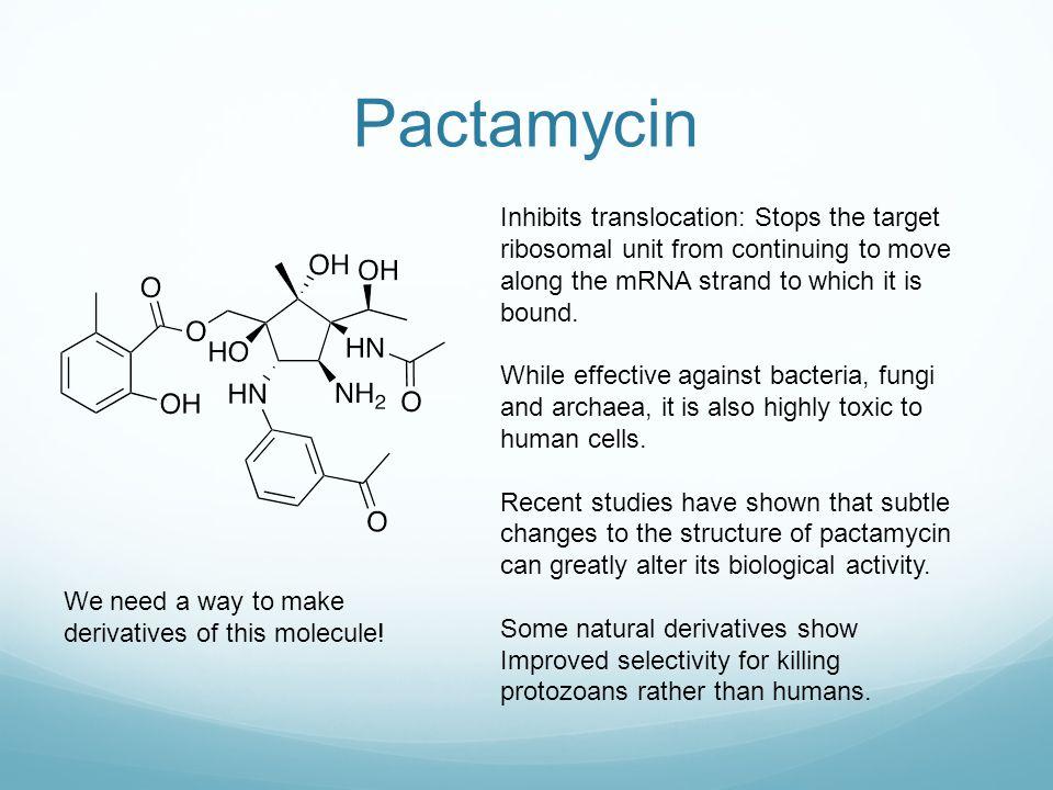 Pactamycin In the context of the work described herein, it is worth noting that Lu et al.