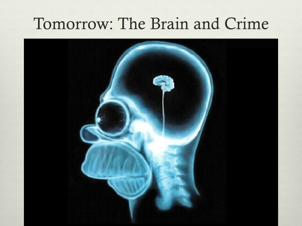 Tomorrow: The Brain and Crime