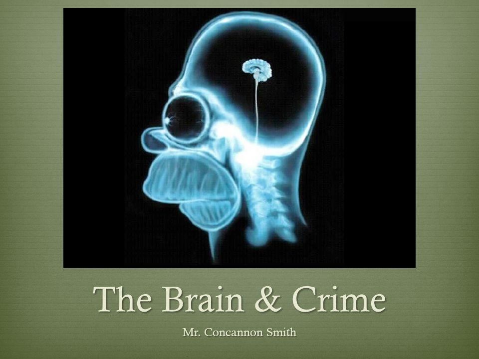 The Brain & Crime Mr. Concannon Smith