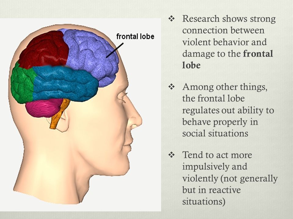  Research shows strong connection between violent behavior and damage to the frontal lobe  Among other things, the frontal lobe regulates out ability to behave properly in social situations  Tend to act more impulsively and violently (not generally but in reactive situations)