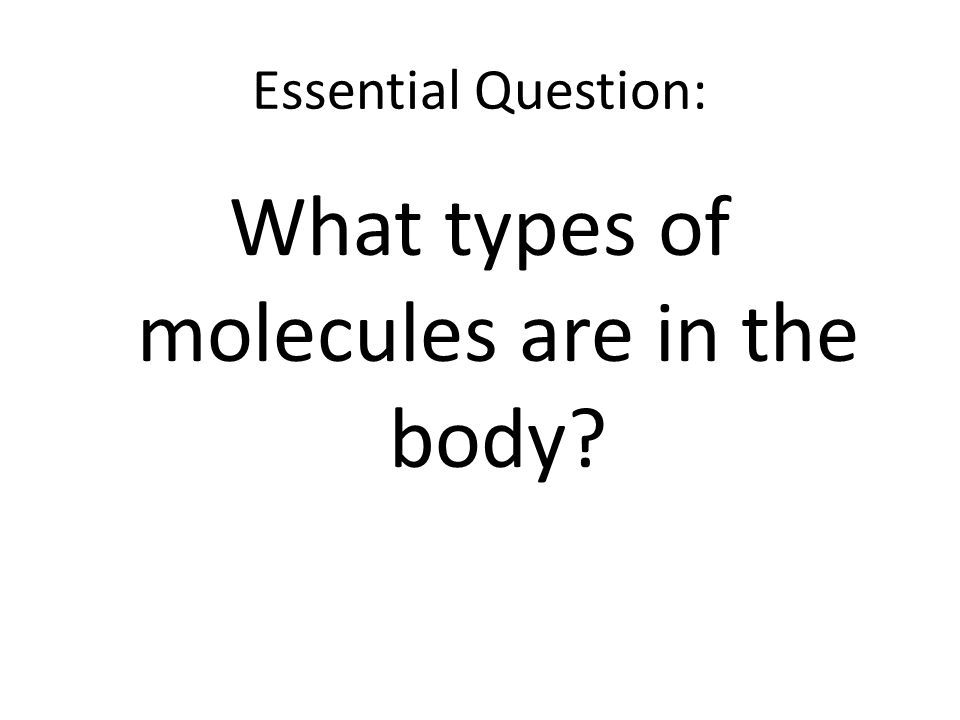 Essential Question: What types of molecules are in the body