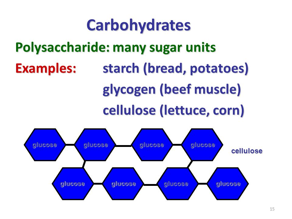15 Carbohydrates Polysaccharide: many sugar units Examples:starch (bread, potatoes) glycogen (beef muscle) cellulose (lettuce, corn) glucoseglucose gl