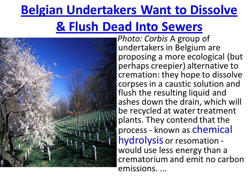Belgian Undertakers Want to Dissolve & Flush Dead Into Sewers Photo: Corbis A group of undertakers in Belgium are proposing a more ecological (but perhaps creepier) alternative to cremation: they hope to dissolve corpses in a caustic solution and flush the resulting liquid and ashes down the drain, which will be recycled at water treatment plants.