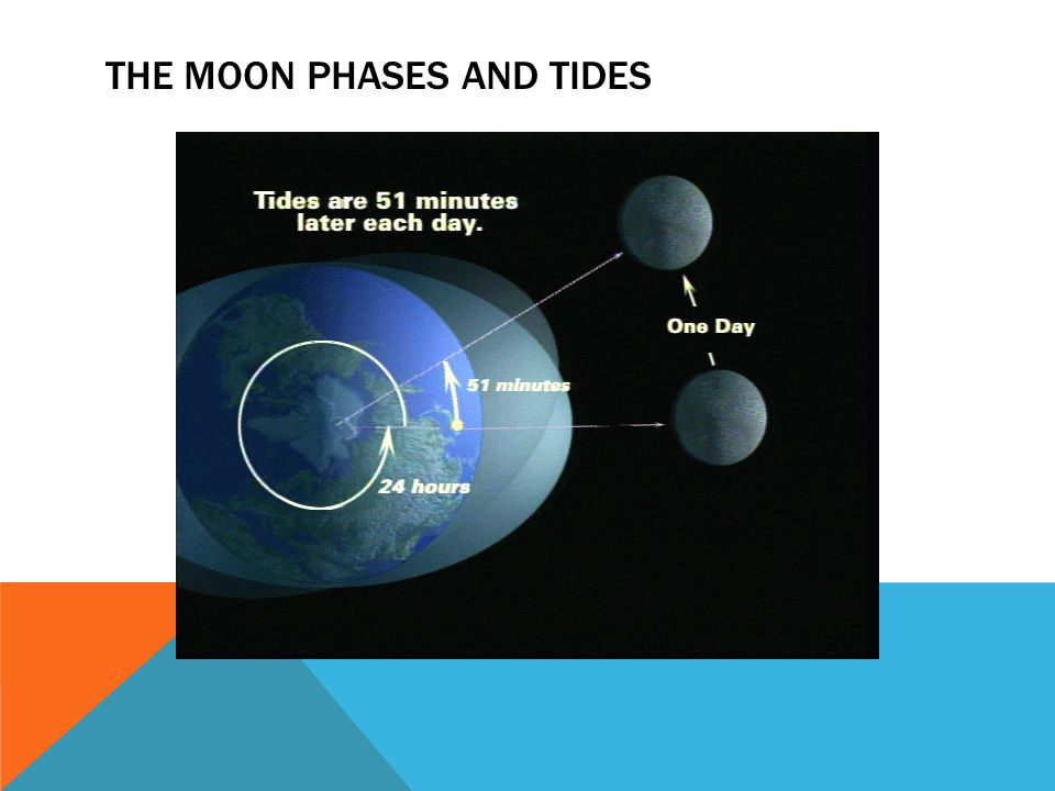 THE MOON PHASES AND TIDES