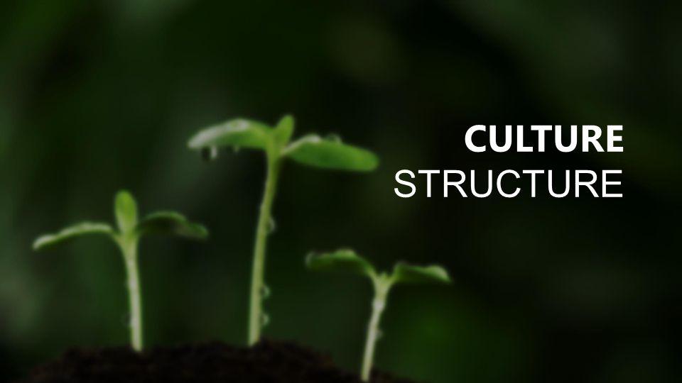 CULTURE STRUCTURE