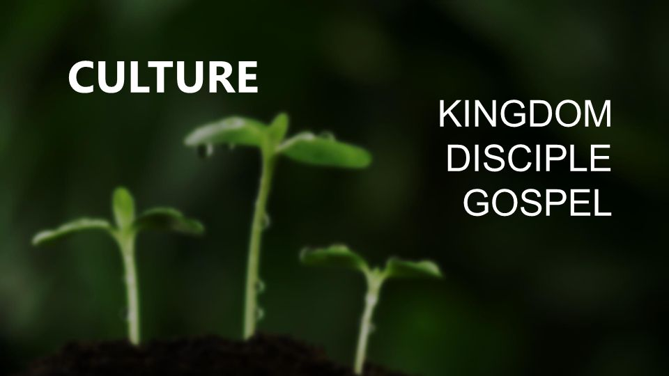 KINGDOM DISCIPLE GOSPEL CULTURE
