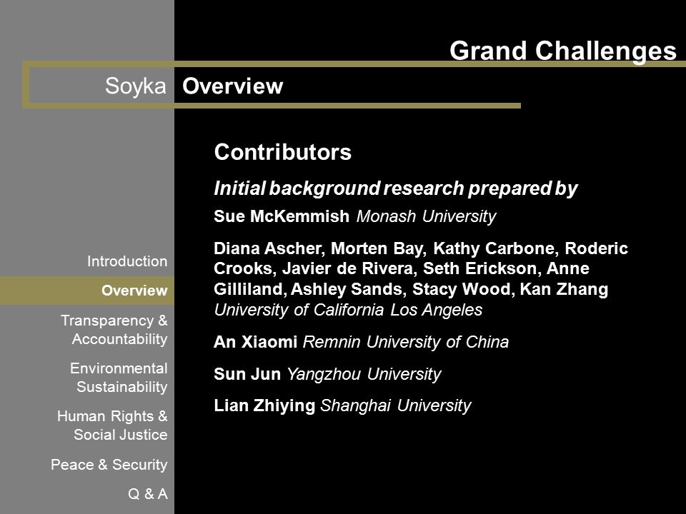Soyka Grand Challenges Overview Introduction Overview Transparency & Accountability Environmental Sustainability Human Rights & Social Justice Peace &