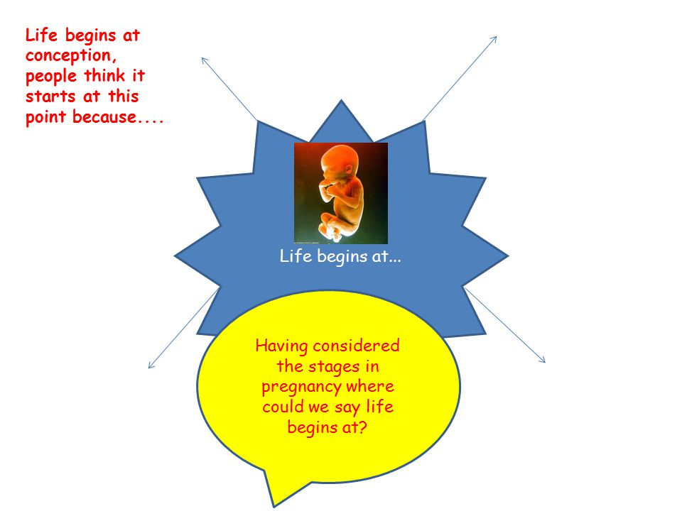 Life begins at... Life begins at conception, people think it starts at this point because.... Having considered the stages in pregnancy where could we