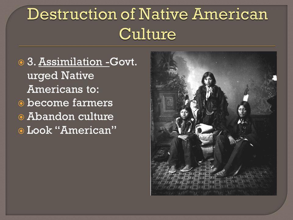  3. Assimilation -Govt.