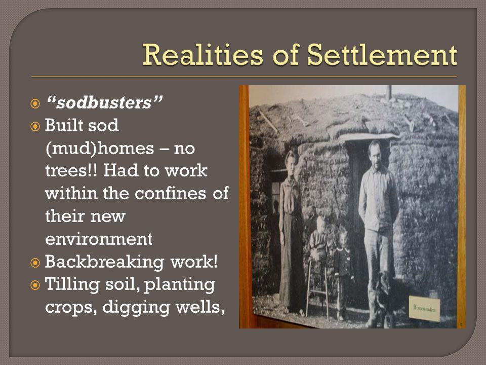  sodbusters  Built sod (mud)homes – no trees!.