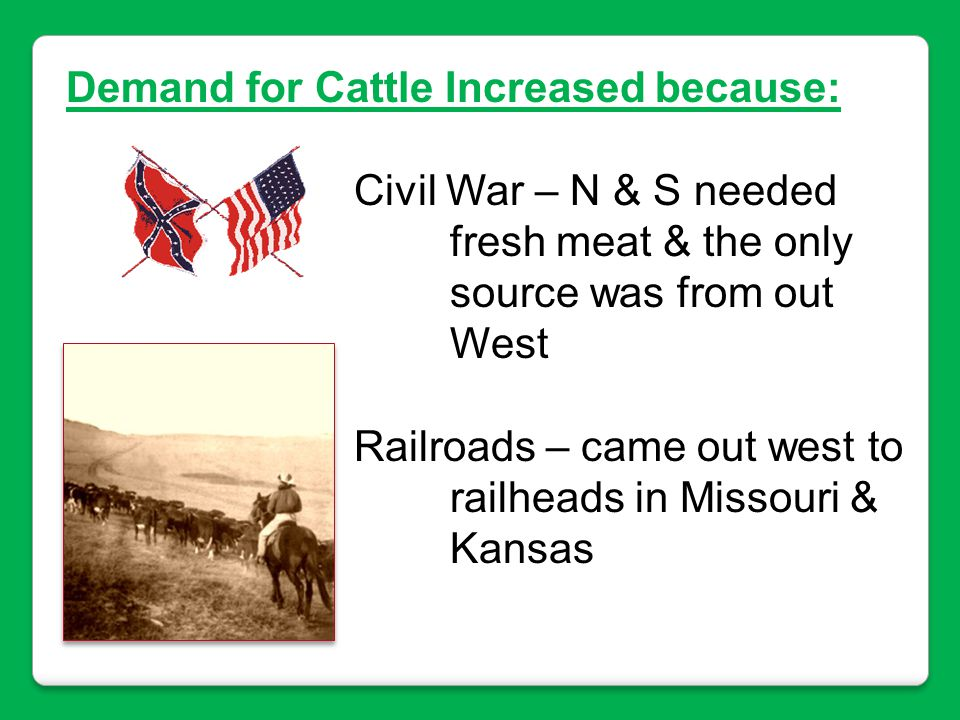 Demand for Cattle Increased because: Civil War – N & S needed fresh meat & the only source was from out West Railroads – came out west to railheads in