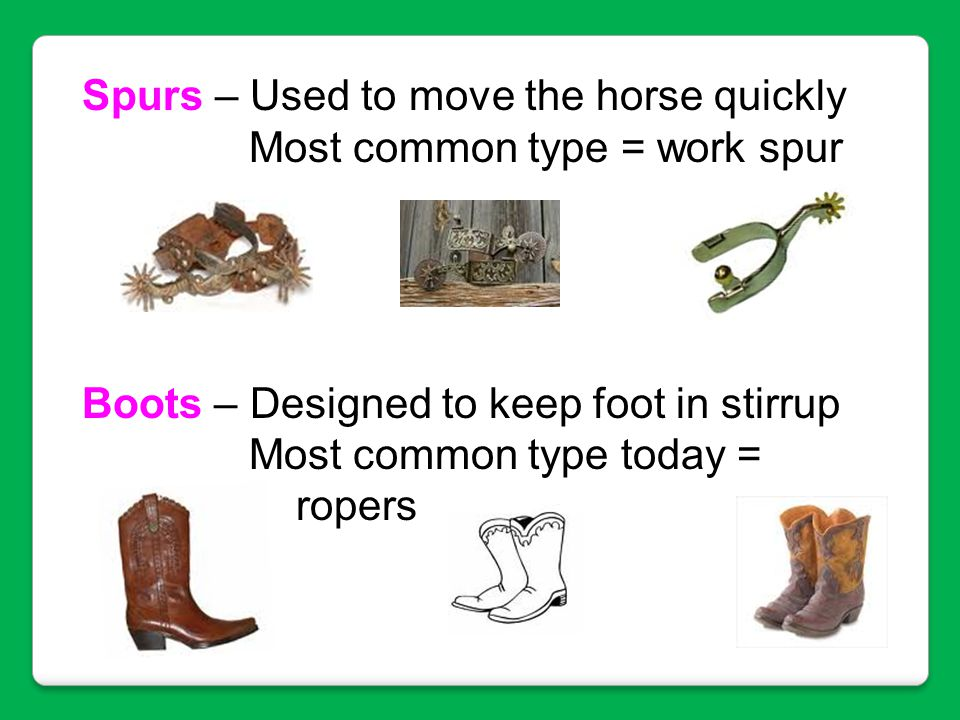 Spurs – Used to move the horse quickly Most common type = work spur Boots – Designed to keep foot in stirrup Most common type today = ropers