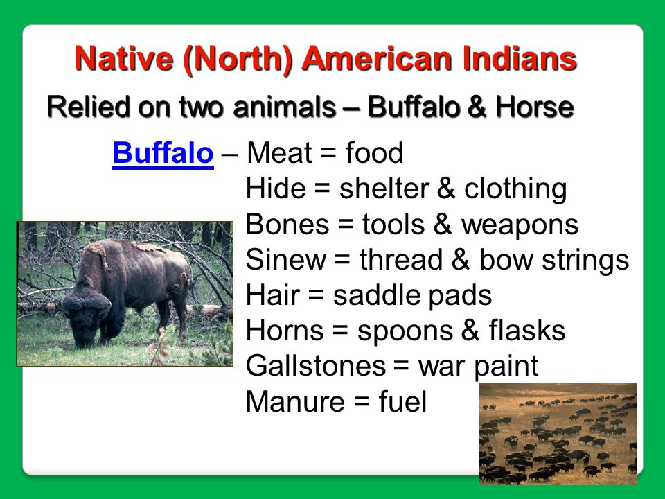 Railroad – iron arrow – hired people to lay tracks; shot buffalo to feed RR workers.