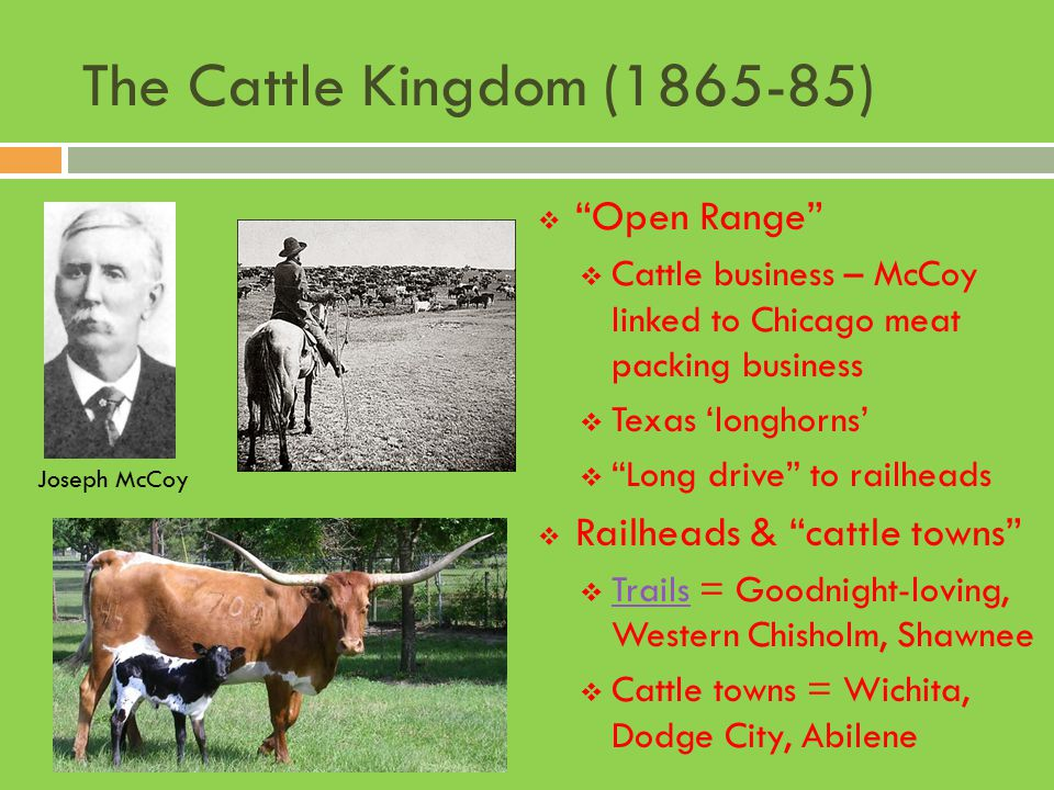 """The Cattle Kingdom (1865-85)  """"Open Range""""  Cattle business – McCoy linked to Chicago meat packing business  Texas 'longhorns'  """"Long drive"""" to ra"""