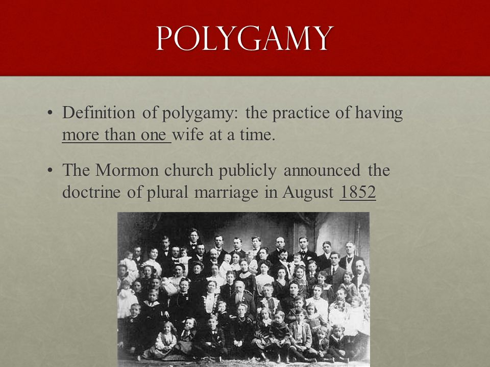 Polygamy Definition of polygamy: the practice of having more than one wife at a time.