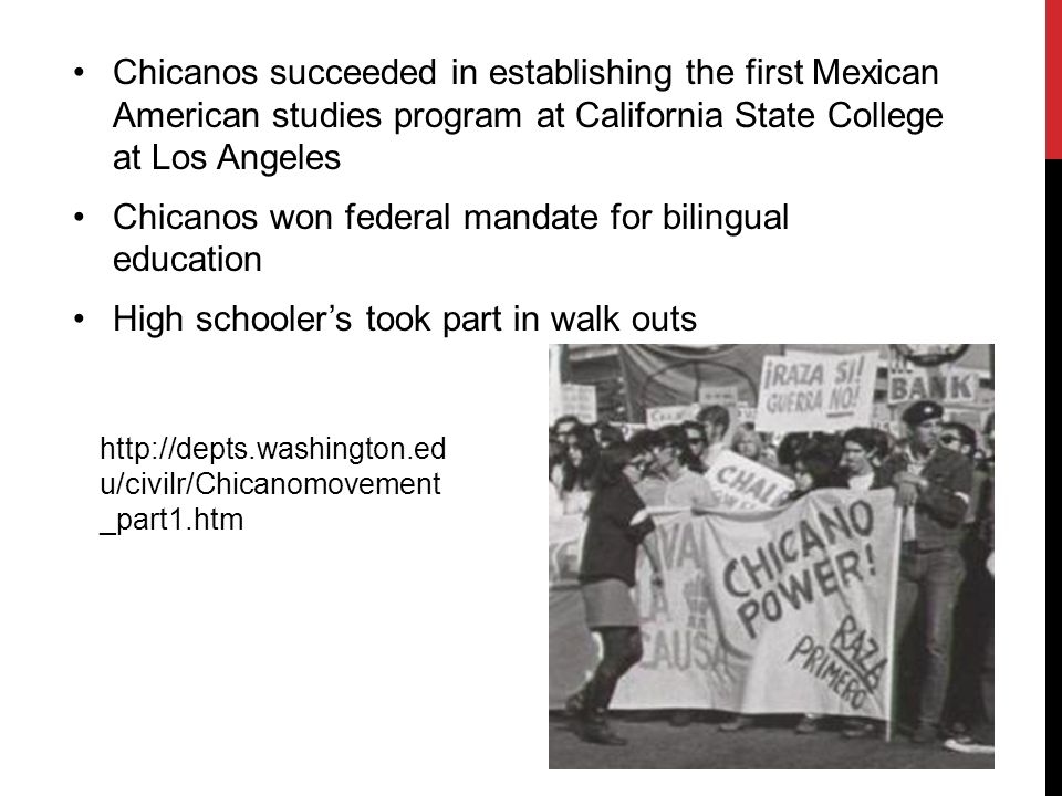 Chicanos succeeded in establishing the first Mexican American studies program at California State College at Los Angeles Chicanos won federal mandate for bilingual education High schooler's took part in walk outs http://depts.washington.ed u/civilr/Chicanomovement _part1.htm