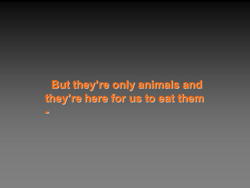 But they're only animals and they're here for us to eat them -