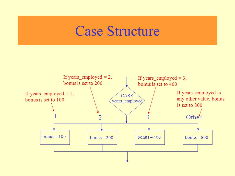 Case Structure CASE years_employed 1 2 3 Other bonus = 100 bonus = 200 bonus = 400 bonus = 800 If years_employed = 1, bonus is set to 100 If years_emp