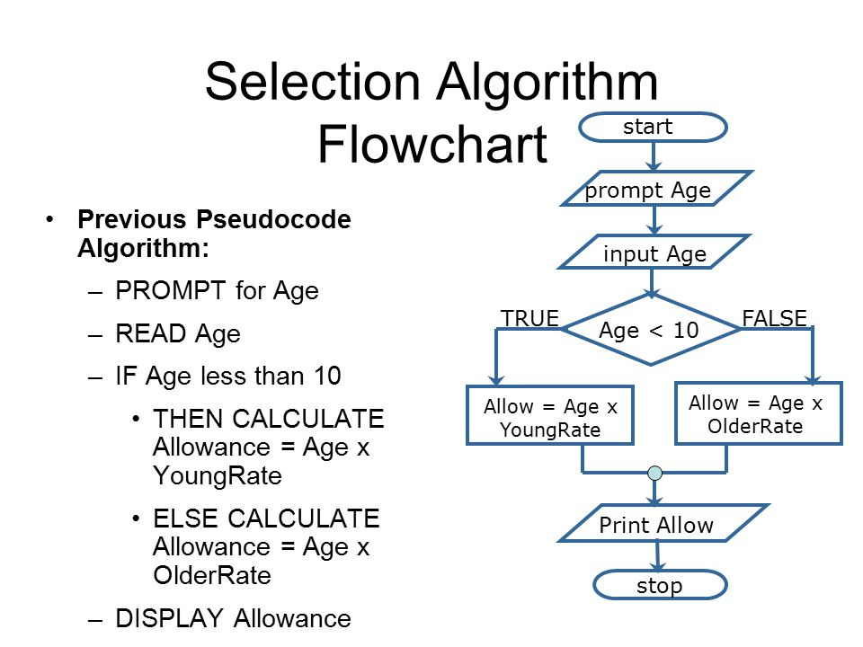 Selection Algorithm Flowchart Previous Pseudocode Algorithm: –PROMPT for Age –READ Age –IF Age less than 10 THEN CALCULATE Allowance = Age x YoungRate