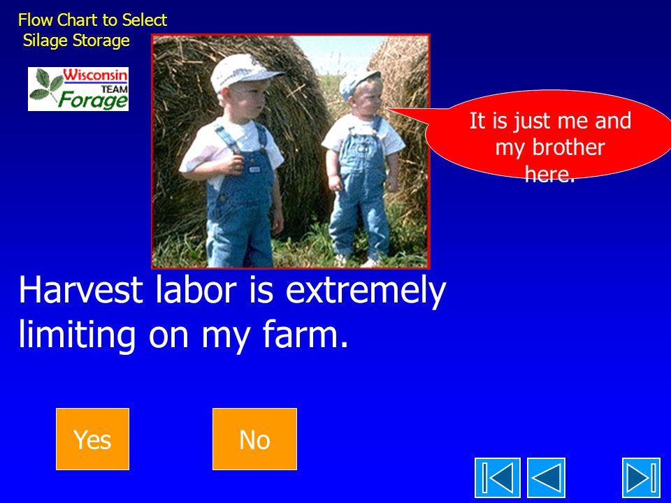 Harvest labor is extremely limiting on my farm.