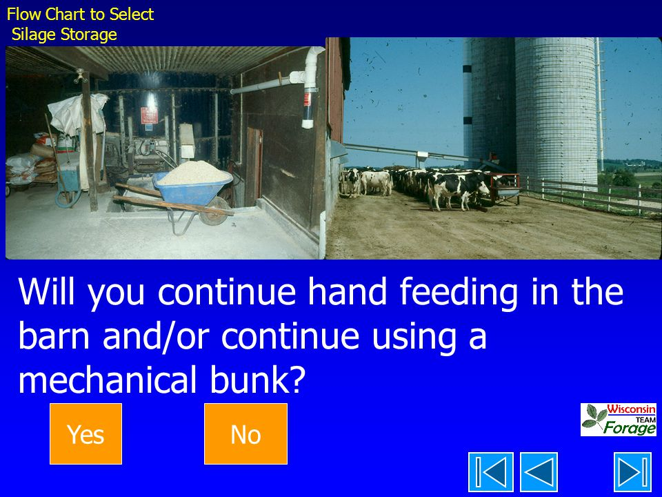 Will you continue hand feeding in the barn and/or continue using a mechanical bunk.
