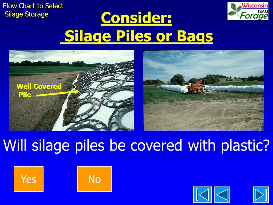Consider: Silage Piles or Bags Will silage piles be covered with plastic.