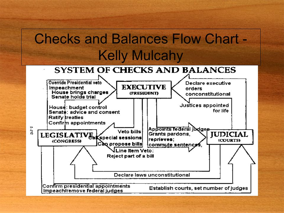 Checks and Balances Flow Chart - Kelly Mulcahy