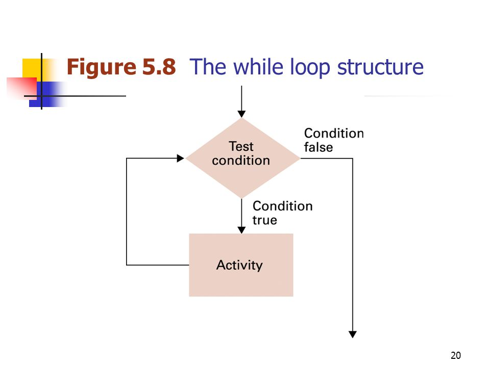 20 Figure 5.8 The while loop structure