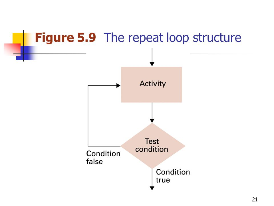 21 Figure 5.9 The repeat loop structure