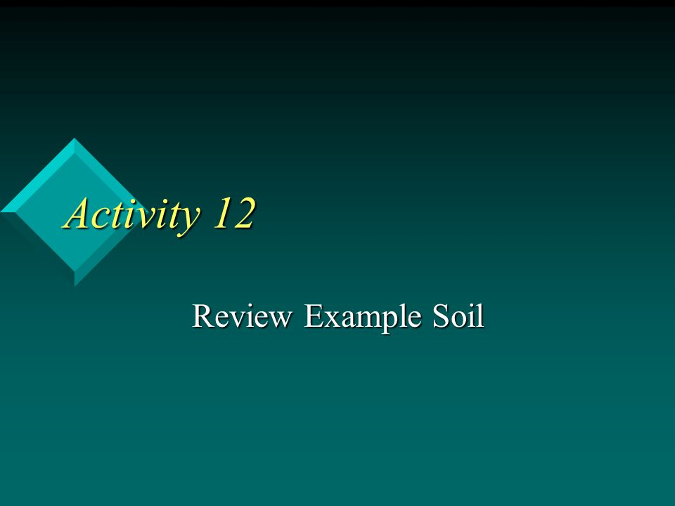 Activity 12 Review Example Soil