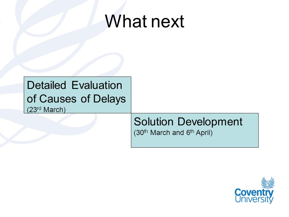 What next Detailed Evaluation of Causes of Delays (23 rd March) Solution Development (30 th March and 6 th April)