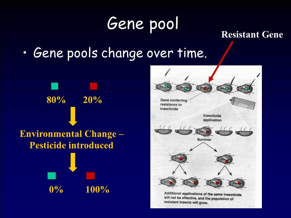 Gene pool Gene pools change over time. 0%100%80%20% Environmental Change – Pesticide introduced Resistant Gene