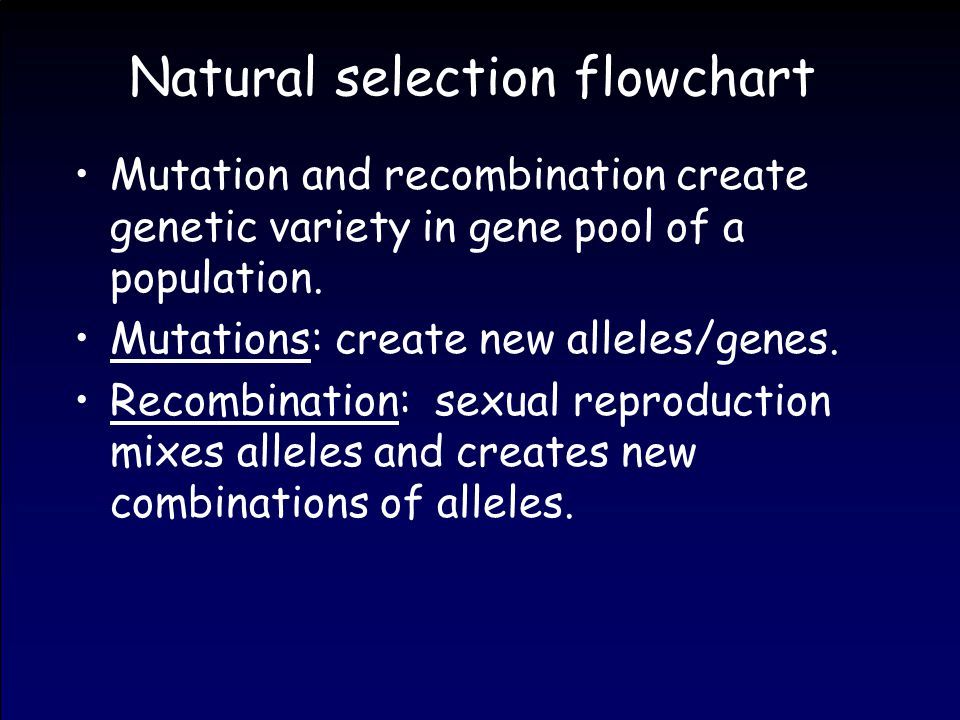 Natural selection flowchart Mutation and recombination create genetic variety in gene pool of a population.